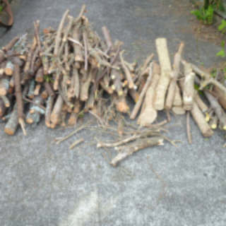 Wood for Firewood - Pick up Howick