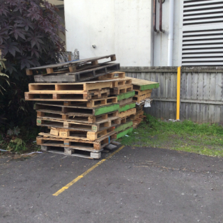 Fire wood or Wooden pallets